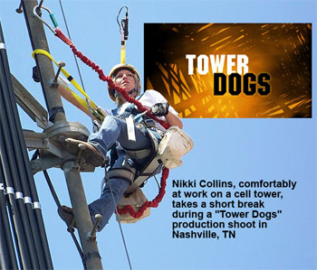 Tower Dogs
