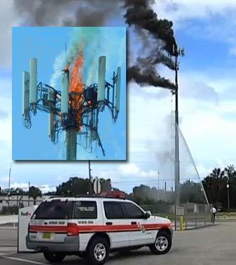 Welding destroys Flordia monopole