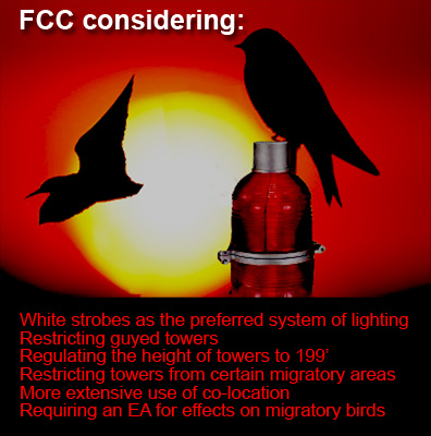 Tower Bird Kill FCC