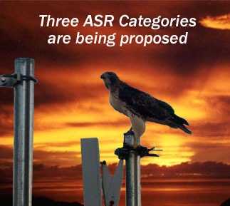 ASR Categories Birds Towers