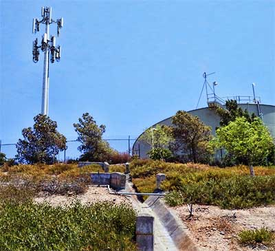 The homeowner had no idea that the property that this cell tower was built on was his. He might be getting a quarter to half-million-dollar windfall and a monthly check from Crown Castle.