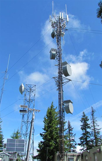 Although surrounding trees provide a scenic look to the communications tower on Halls Ridge, their inability to be removed endangers vital emergency communications